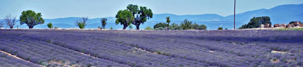 Provence-guiden